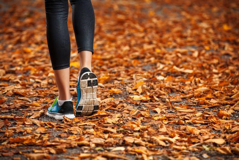 Mujer joven que corre en las hojas de otoño de la última hora de la tarde imagen de archivo libre de regalías