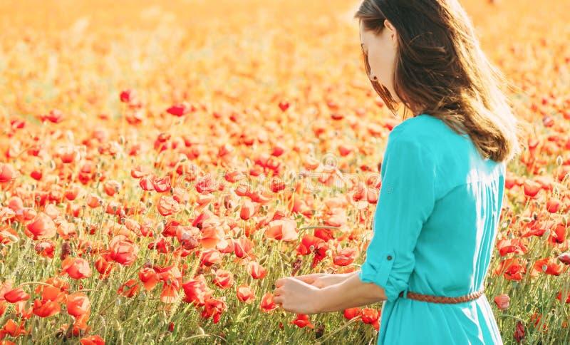 Mujer joven que escoge amapolas en prado imagen de archivo libre de regalías
