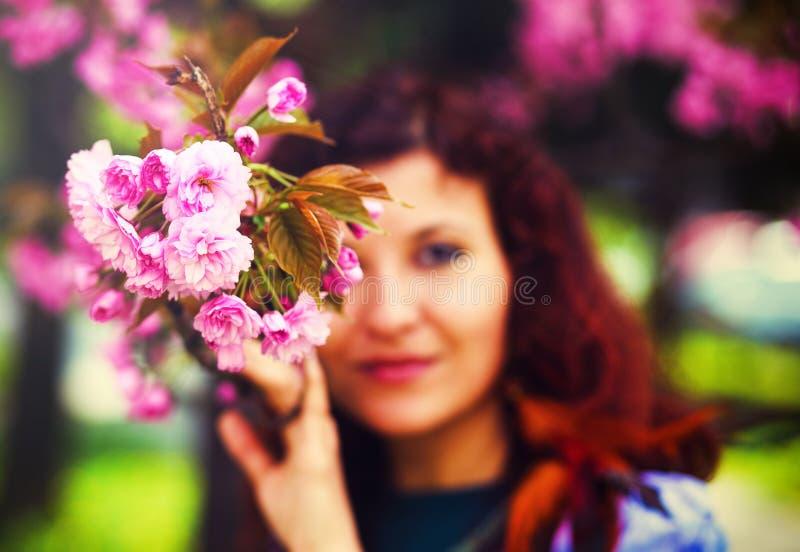 Mujer joven que huele un flor hermoso de Sakura, flores rosadas fotos de archivo