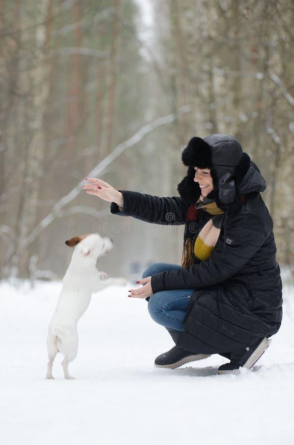 Mujer joven que juega con el perro foto de archivo libre de regalías