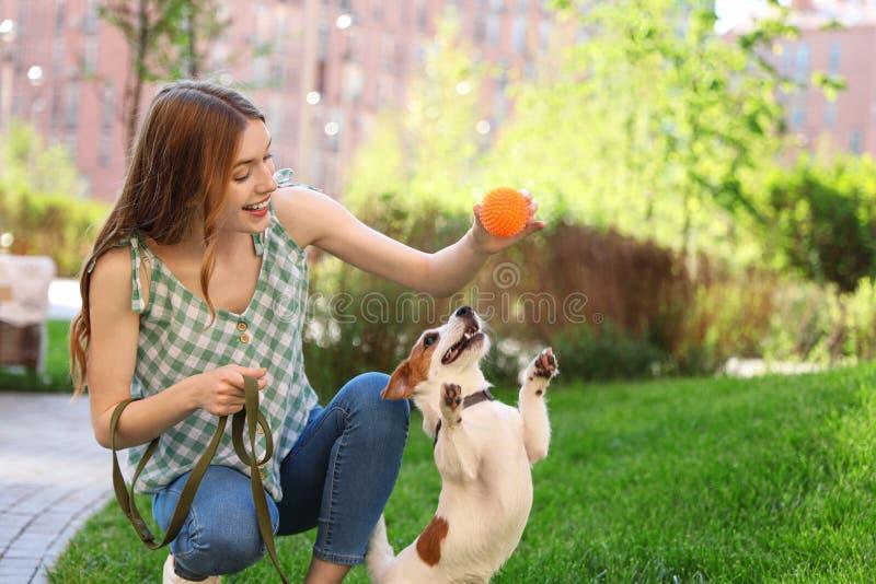 Mujer joven que juega con el perro adorable de Jack Russell Terrier imagen de archivo libre de regalías
