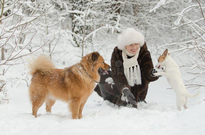 Mujer joven que juega con los perros imagen de archivo
