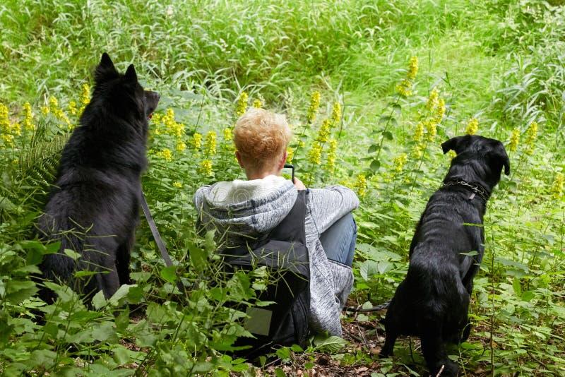 Mujer joven que manda un SMS en el teléfono con dos perros negros que se sientan en la hierba fotografía de archivo