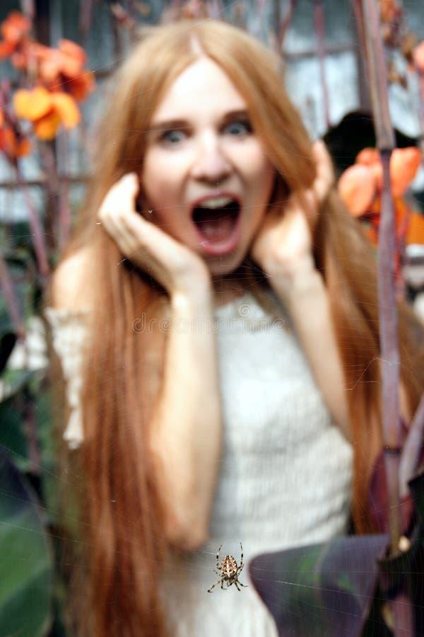 Mujer joven que mira la araña y que grita imagenes de archivo