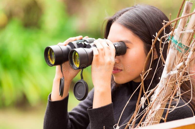 Mujer joven que mira a través de los prismáticos negros en el bosque en un fondo borroso foto de archivo