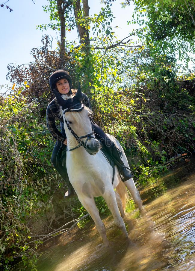 Mujer joven que monta un caballo en el jinete hermoso del río A y ho foto de archivo libre de regalías