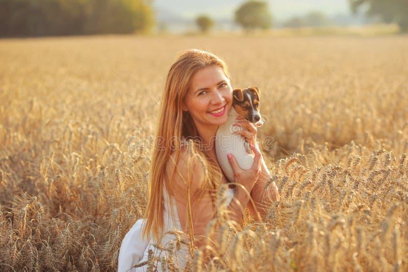 Mujer joven que sostiene el perrito de Jack Russell Terrier, en el fie del trigo imagen de archivo