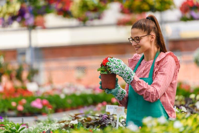 Mujer joven que trabaja en centro de jardinería hermoso fotos de archivo libres de regalías