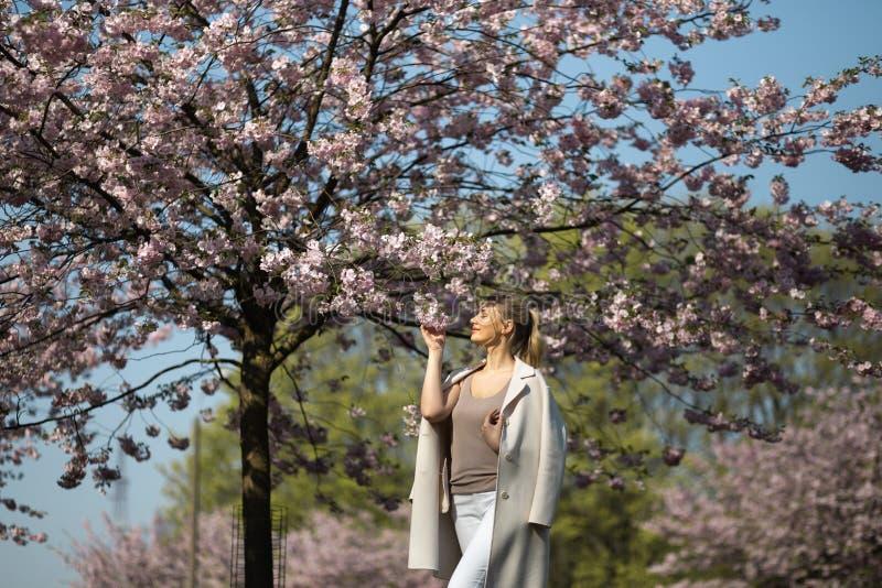 Mujer joven rubia hermosa en el parque de Sakura Cherry Blossom en primavera que disfruta de la naturaleza y del tiempo libre dur fotos de archivo
