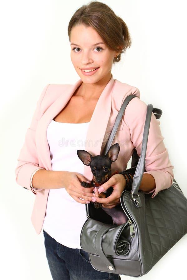 Mujer joven sonriente con la chihuahua en un bolso aislado en blanco fotos de archivo libres de regalías