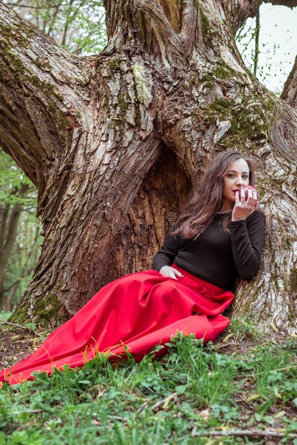 Mujer mística de la bruja imagen de archivo libre de regalías