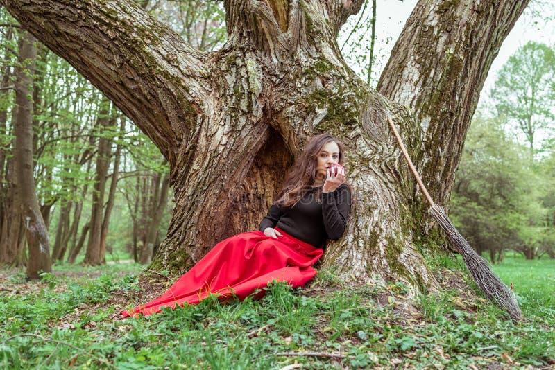 Mujer mística de la bruja imagen de archivo