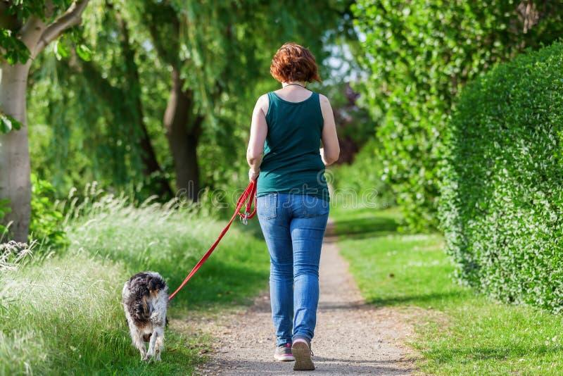 Mujer madura con el perro de Bretaña en el correo imagen de archivo