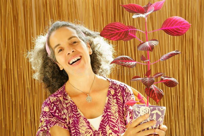 Mujer madura de risa natural que sostiene la planta roja imagen de archivo