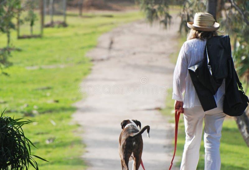Mujer madura en el perro casero que camina del día de fiesta imagen de archivo libre de regalías