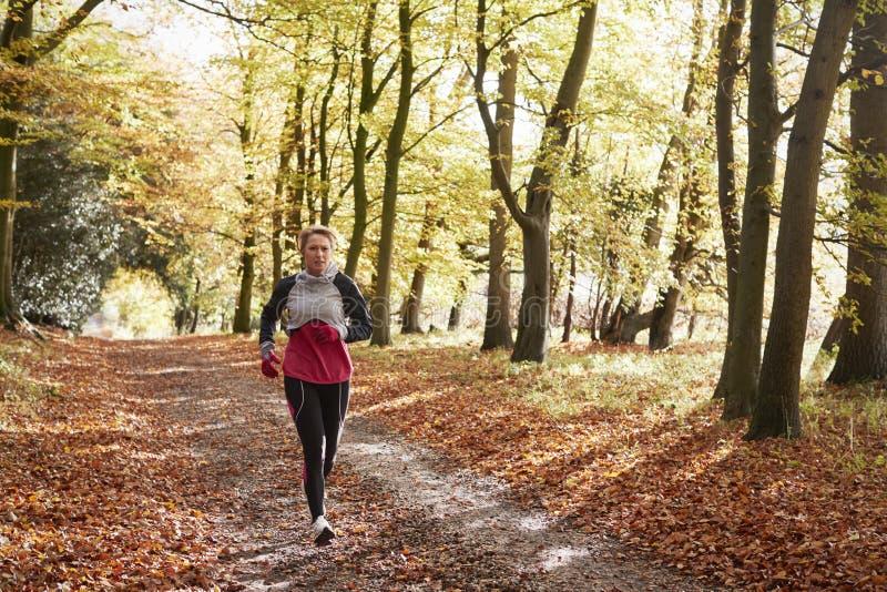 Mujer madura que corre a través de Autumn Woodland imagen de archivo