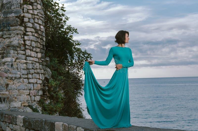 Mujer marrón joven romántica del pelo que lleva al Dr. elegante del vestido de la moda imagenes de archivo