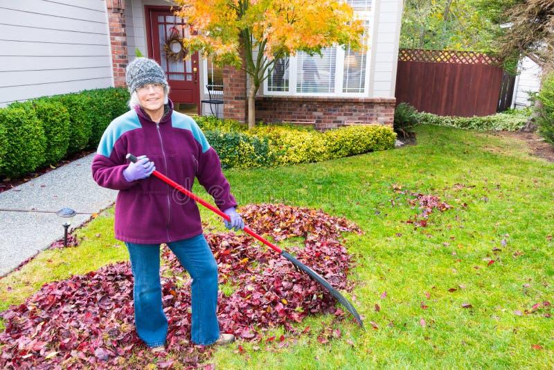 Mujer mayor activa que rastrilla las hojas fotos de archivo