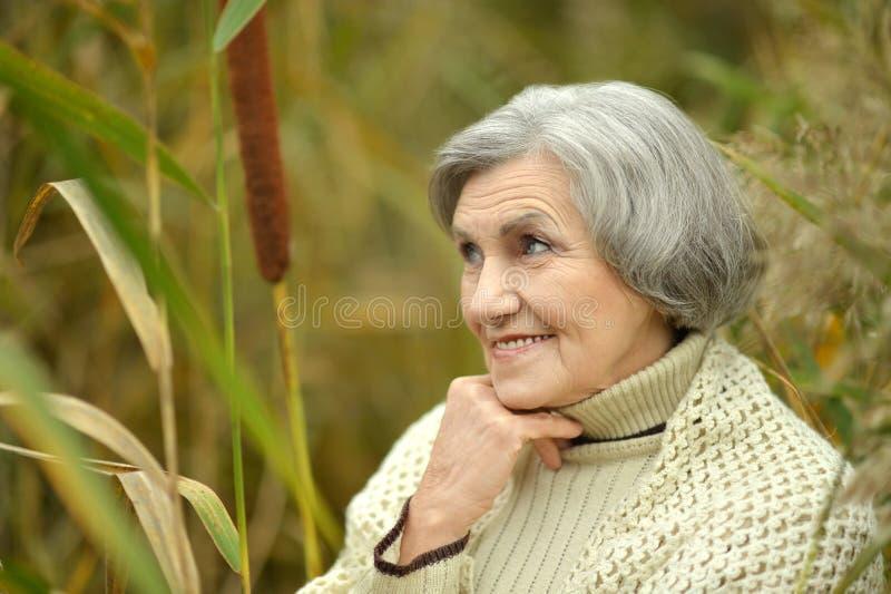 Mujer mayor agradable imagen de archivo