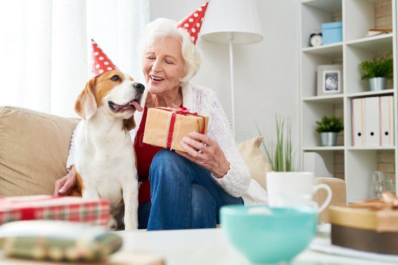 Mujer mayor alegre que felicita el perro con cumpleaños imágenes de archivo libres de regalías