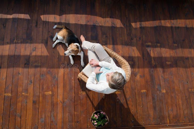 Mujer mayor con el perro, sentándose en la terraza de madera, relajándose imagen de archivo