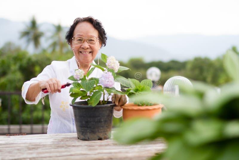 Mujer mayor con la cara feliz foto de archivo