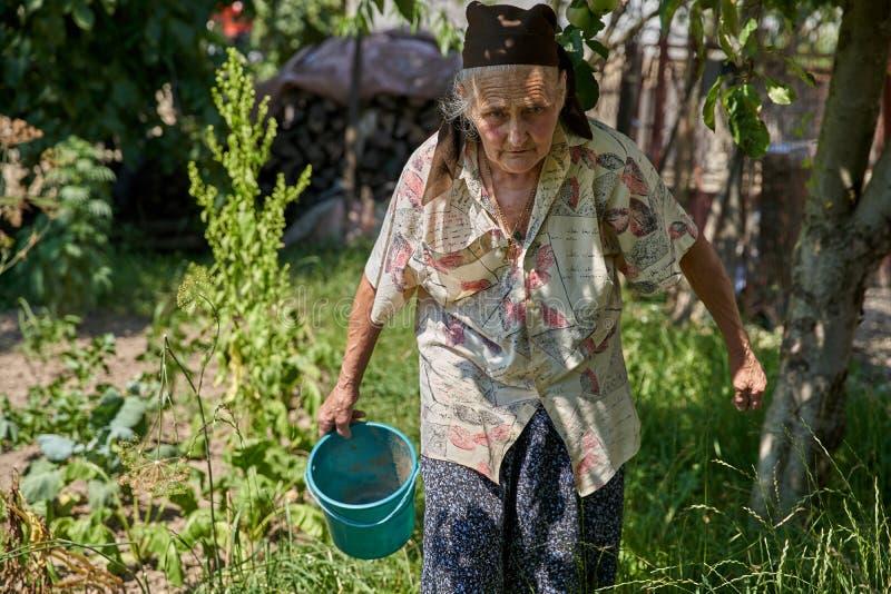 Mujer mayor en el jard?n vegetal fotos de archivo libres de regalías
