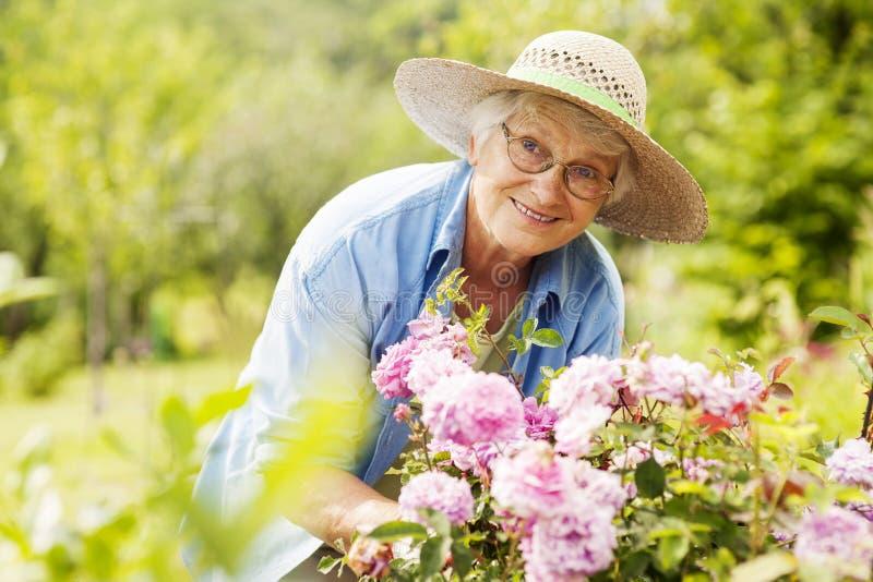 Mujer mayor en jardín foto de archivo
