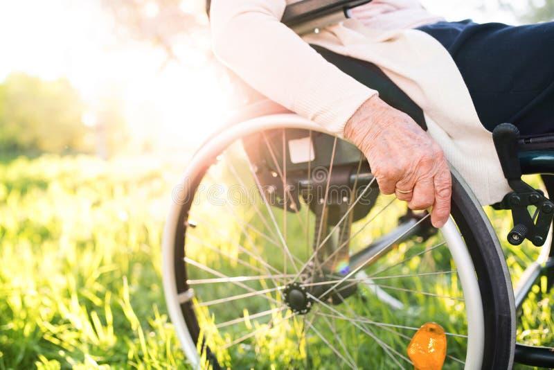 Mujer mayor en silla de ruedas en naturaleza de la primavera foto de archivo