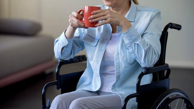 Mujer mayor en té de consumición de la silla de ruedas, pensionista que se relaja en casa, ocio foto de archivo libre de regalías