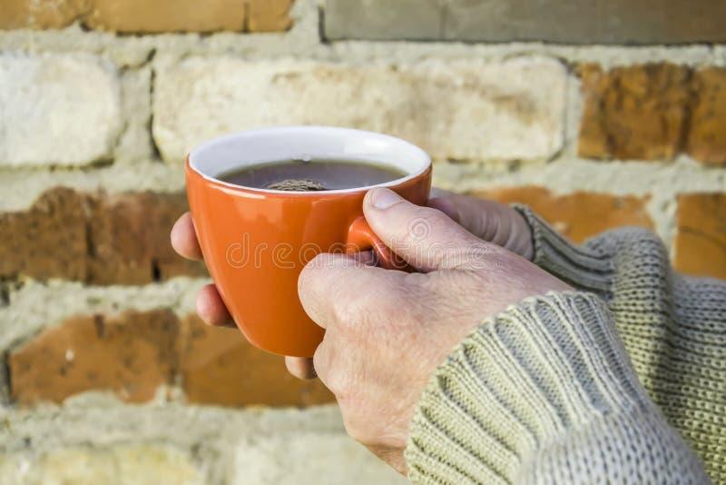 mujer mayor que sostiene una taza de té imágenes de archivo libres de regalías