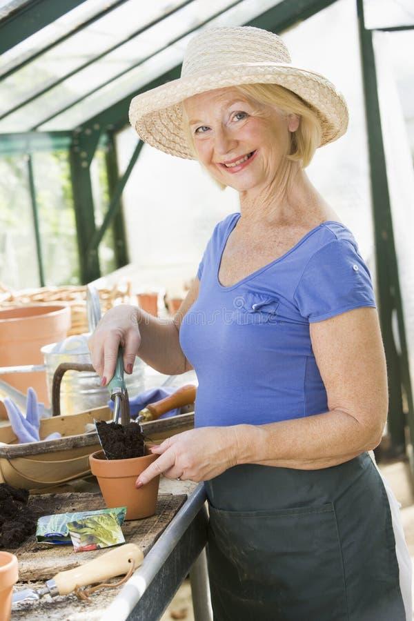 Mujer mayor que trabaja en invernadero foto de archivo libre de regalías