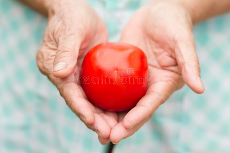 Mujer mayor sana que sostiene el tomate fresco imágenes de archivo libres de regalías