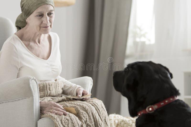 Mujer mayor y perro negro fotos de archivo