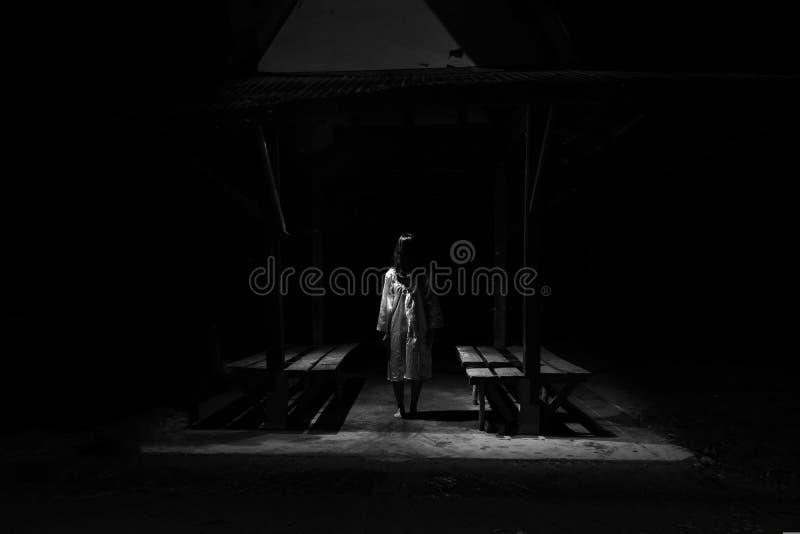 Mujer misteriosa, escena del horror de la mujer asustadiza del fantasma que se destaca imagen de archivo libre de regalías