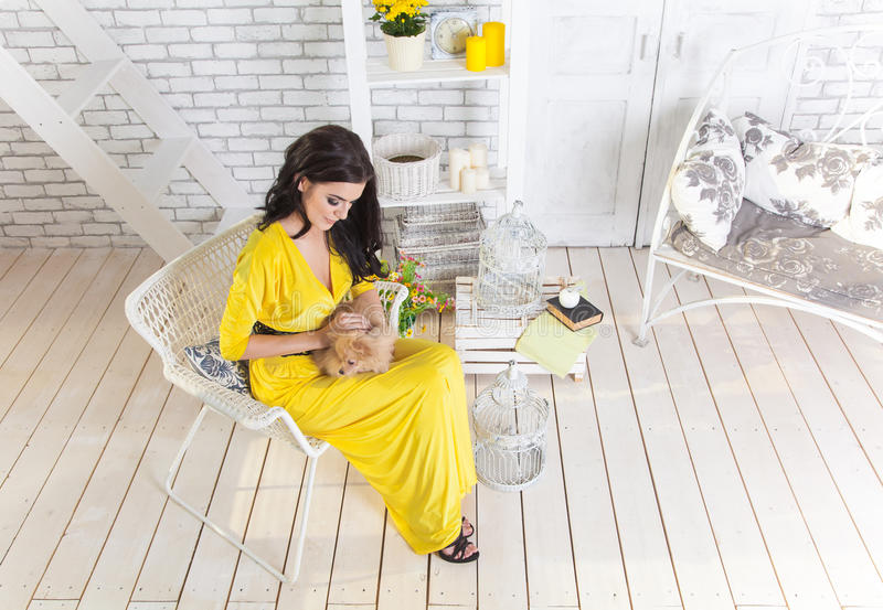 Mujer morena hermosa con el pequeño perro en manos fotografía de archivo
