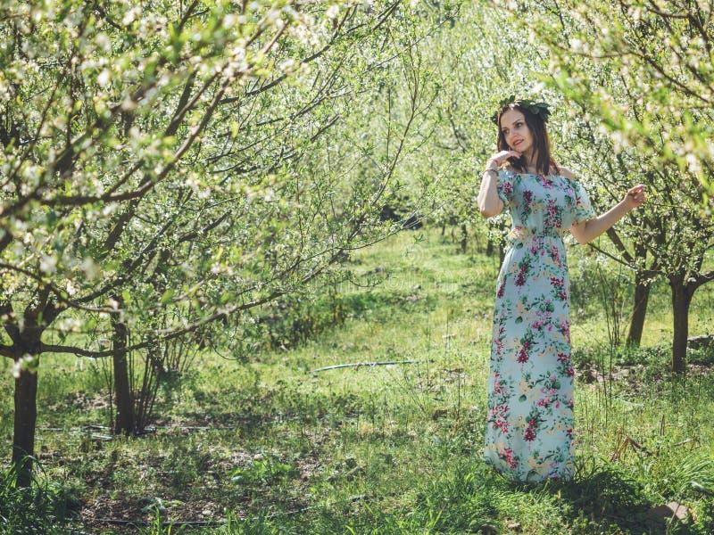 Mujer morena hermosa joven en árboles largos del flor de la primavera del vestido imagenes de archivo