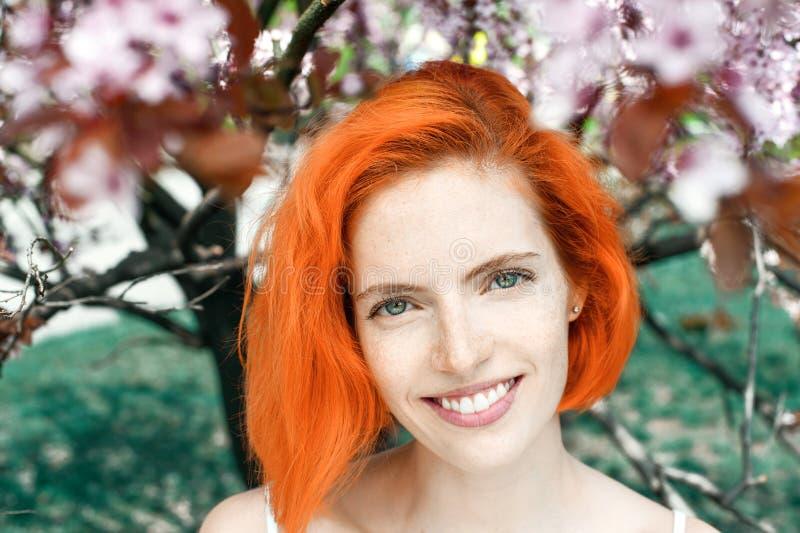 Mujer pelirroja atractiva feliz con las pecas que se colocan al aire libre en flor de cerezo de la primavera imagen de archivo libre de regalías