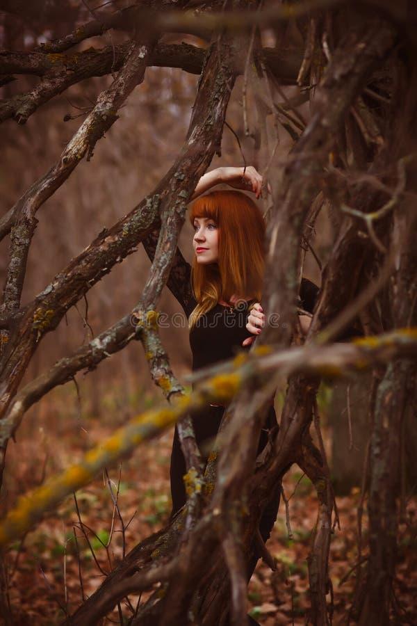 Mujer pelirroja del modelo de la muchacha en el vestido negro seco fotos de archivo