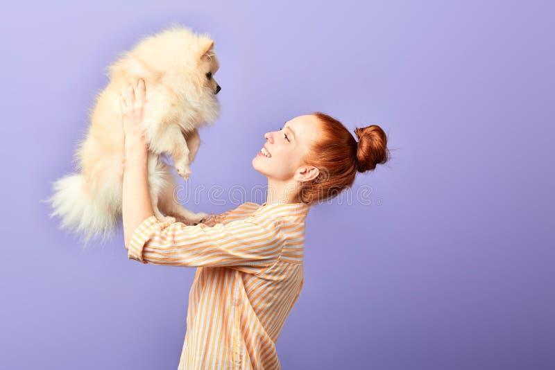 Mujer pelirroja que sostiene un perro mullido agradable de la raza sobre su cabeza fotos de archivo
