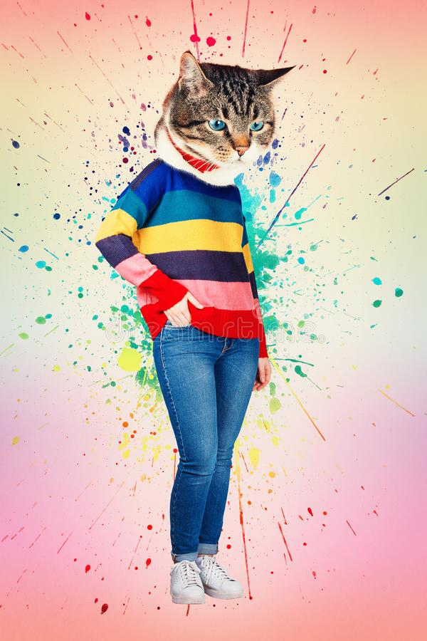 Mujer principal del gato imagen de archivo libre de regalías