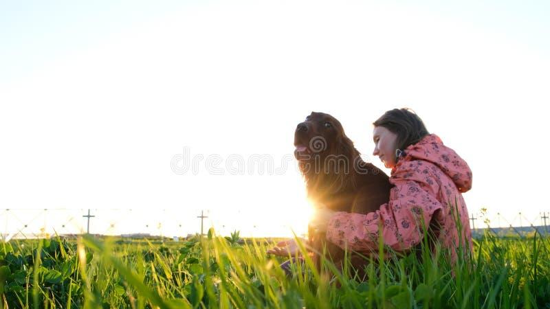 Mujer que abraza el perro en la puesta del sol mientras que se sienta en la hierba imagen de archivo libre de regalías