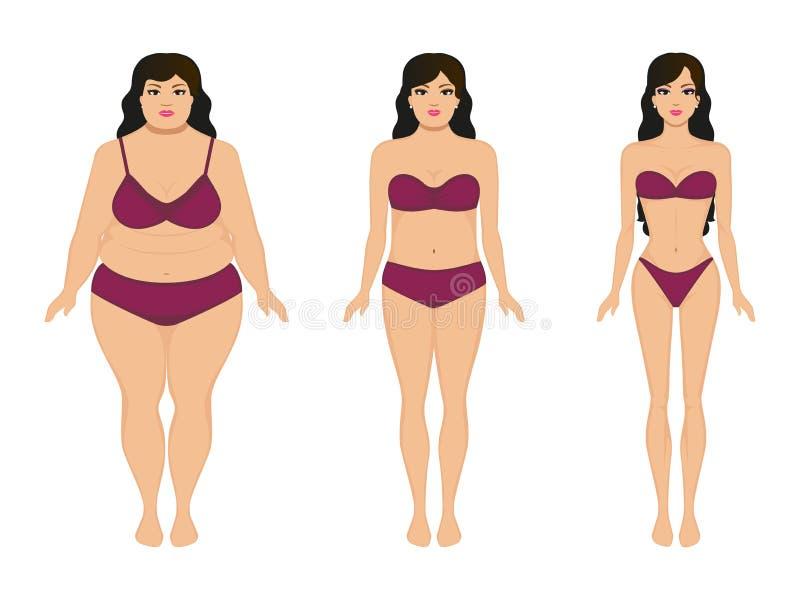 Mujer que adelgaza, muchacha delgada gorda, pérdida de peso femenina ilustración del vector
