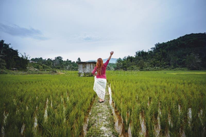 Mujer que aumenta su mano en una granja del arroz de arroz fotos de archivo libres de regalías