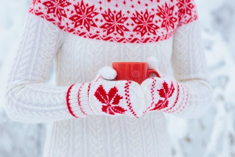 Mujer que bebe el chocolate caliente por mañana de la Navidad en jardín nevoso  imagen de archivo