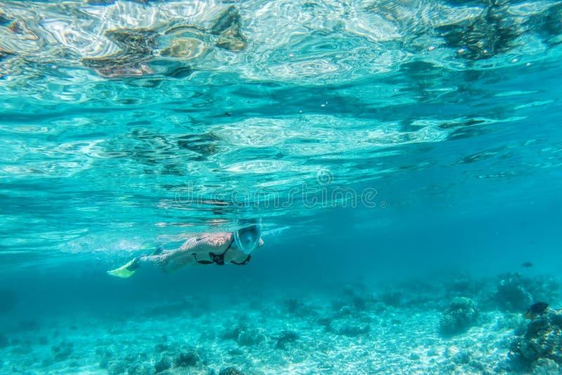 Mujer que bucea bajo el agua en el Océano Índico, Maldivas foto de archivo