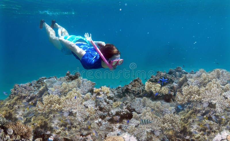 Mujer que bucea bajo el agua sobre un arrecife de coral en Fiji imagenes de archivo