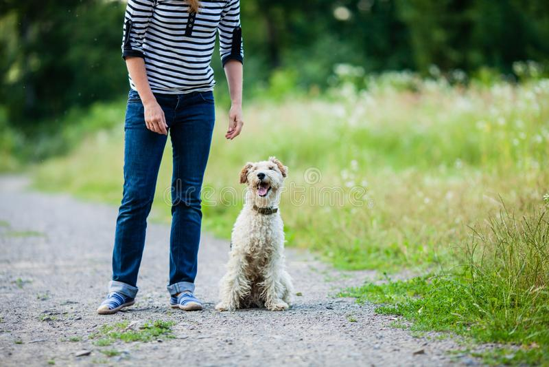 Mujer que camina con un animal doméstico fotografía de archivo