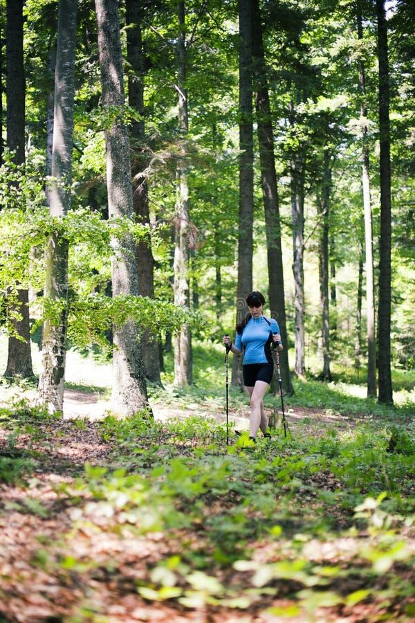 Mujer que camina en el bosque imagen de archivo