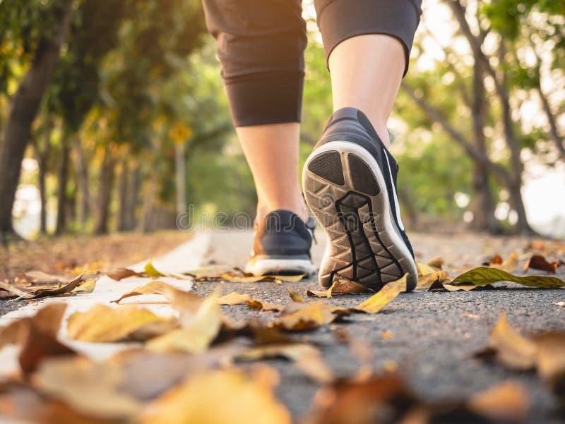 Mujer que camina en forma de vida sana del entrenamiento del parque del rastro del ejercicio al aire libre de la calzada imágenes de archivo libres de regalías